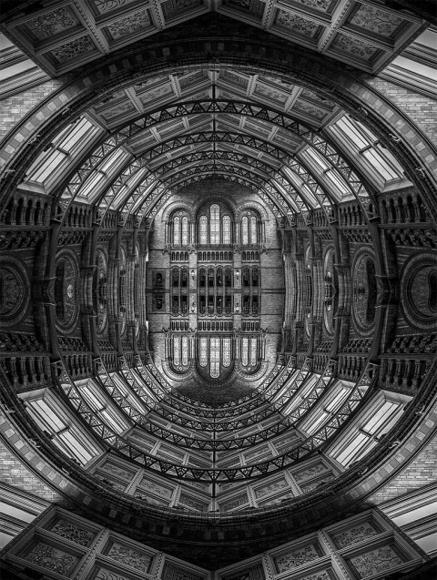 Vintage Architecture of the Natural History Museum in London Reflected in Black and White