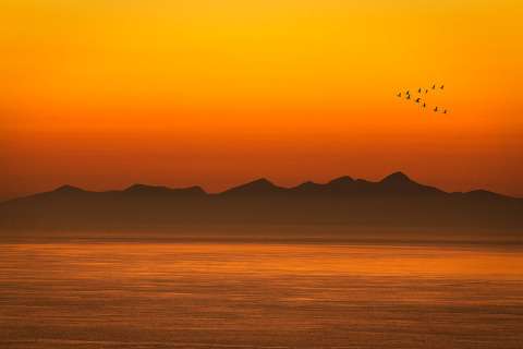 Waterscape of Geese in V Formation at orange sky sunset in isle of Skye Scotland