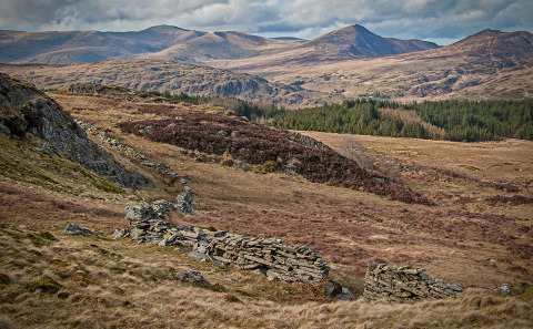 North Wales Mountains and Dry Stone wall Landscape