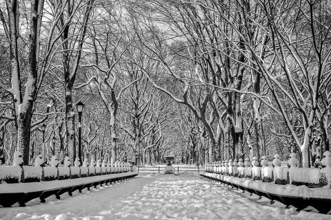 Snow at Poets Walk in Central Park in New York City Black and white