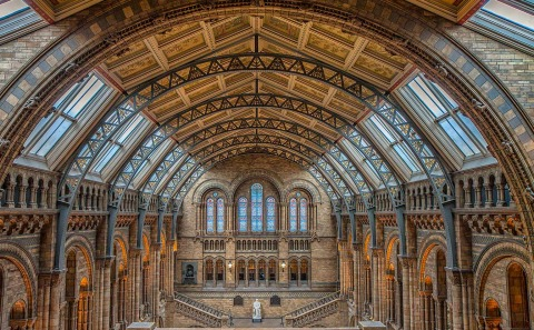 London Natural History Museum Great Hall Architecture and ornate Victorian Building