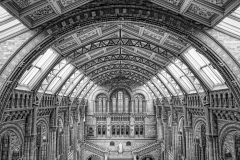 London natural history Museum Building Hall ornate Architecture