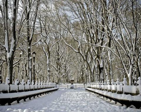 Poets Walk Central Park NYC New York City