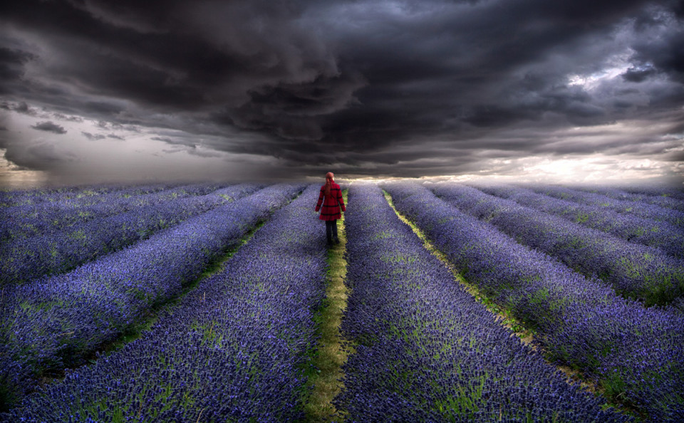 girl-red-coat-lavender-field-storm-sky