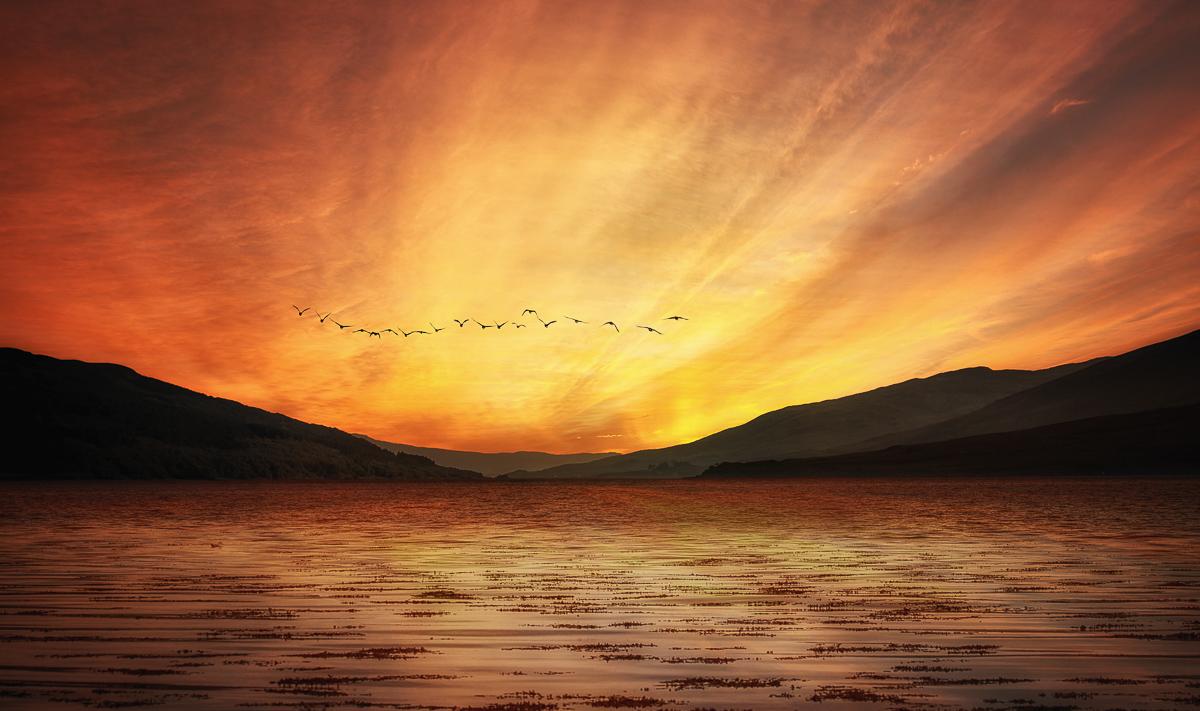Birds flying formation over Scottish Loch at sunset