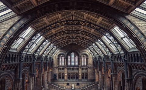 natural history museum great hall london architecture