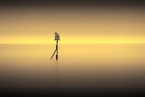 antonyz long exposure landscape tranquil ocean scene sunset birds calm water
