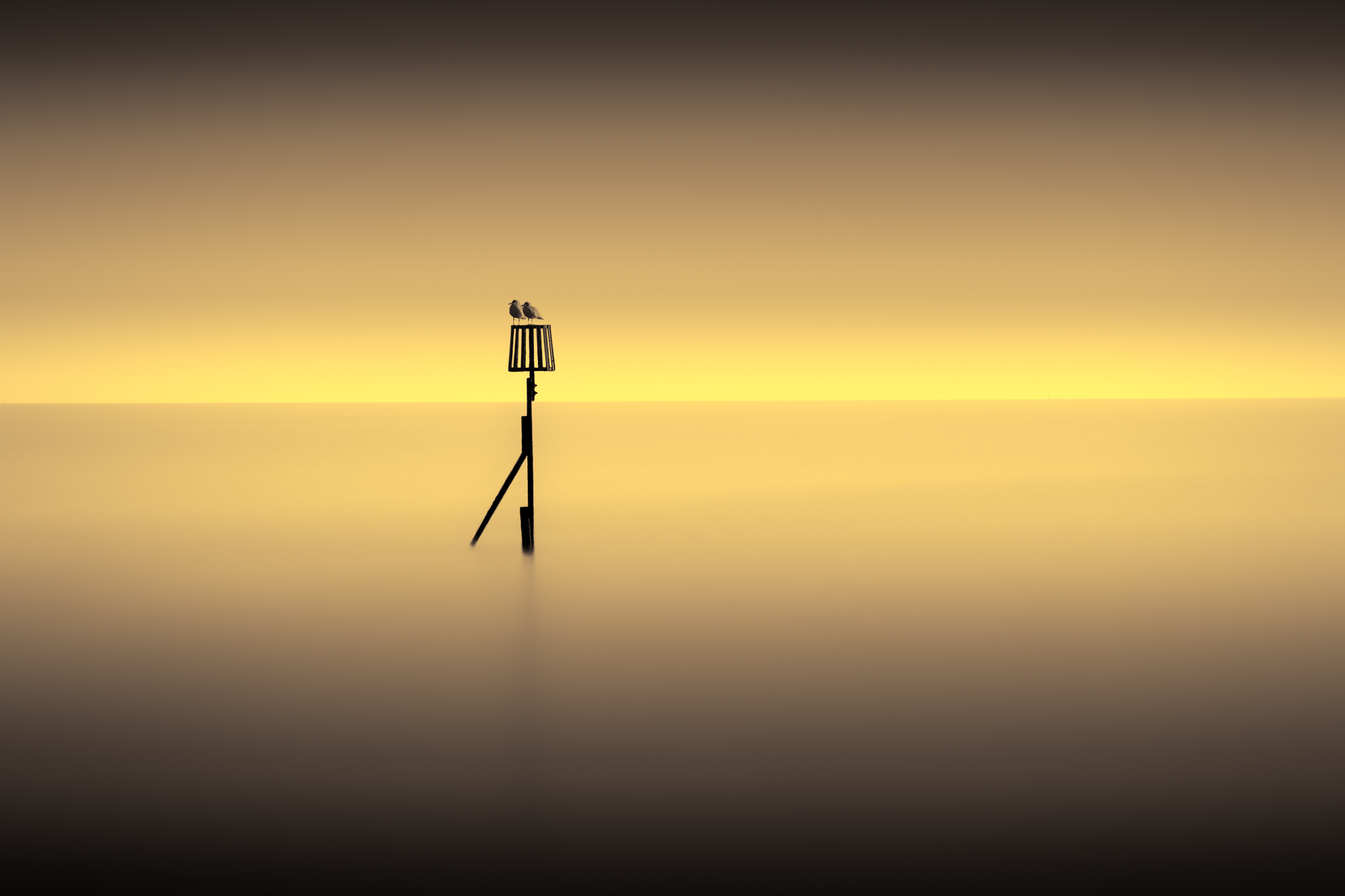 minimal long exposure photograph of two birds resting on a post in the ocean at sunset in the UK